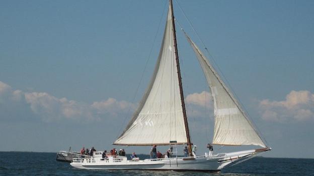 The Skipjack Kathryn sailing in the 2010 Skipjack Race.