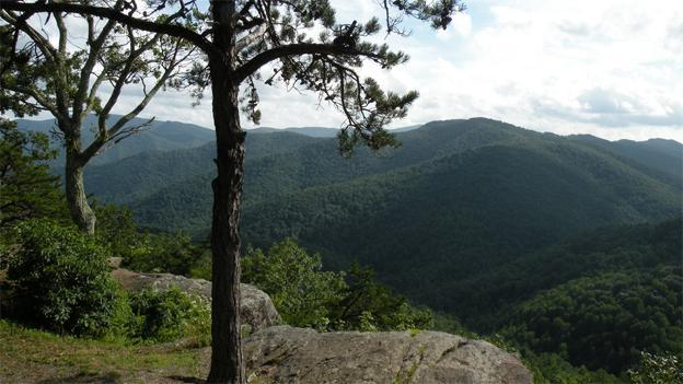 The National Forest Service will have to decide whether to allow fracking in the George Washington National Forest.