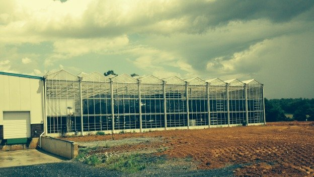 Already selling eight million flowers a year, Bloomaker predicts sales will triple by 2019, so the company's building a massive greenhouse near Waynesboro.