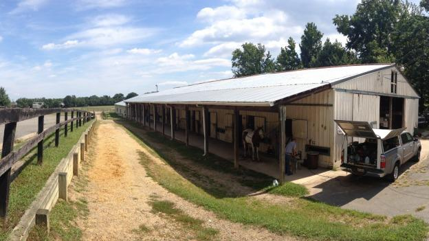 The future of Woodlawn Stables is in doubt now that the Federal Highway Administration wants to build a road through this stable.