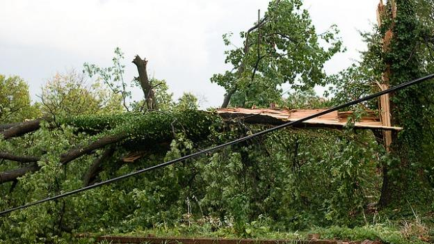 Under the plan, downed power lines in D.C. would be a thing of the past.