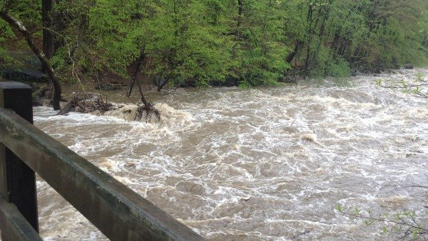 Water levels in Rock Creek and the Potomac River hit historic highs yesterday.