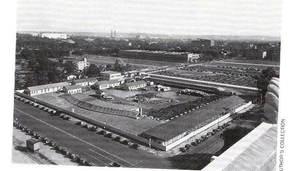 The wood lot on the National Mall once served as a source of income for men struggling during the Great Depression.