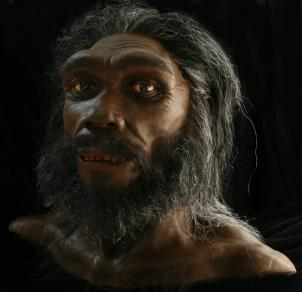 Starting with a cast skull, artist John Gurche builds layers of muscle, fat, and skin to create hyper-realistic busts of human ancestors featured in the new David H. Koch Hall of Human Origins at the Smithsonian's National Museum of Natural History. Pictured: Homo neanderthalensis.