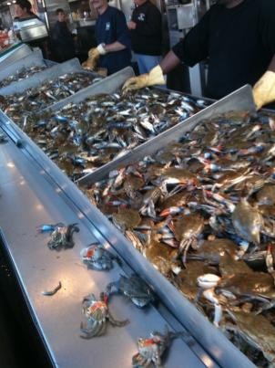 At the Maine Avenue Fish Market blue crabs go for $10 a dozen.