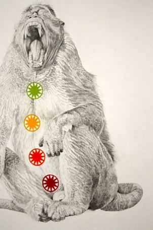 "Jenny Mullins' ""Spiritual Accessories"" features enlightened monkeys wearing candy-colored chakras."