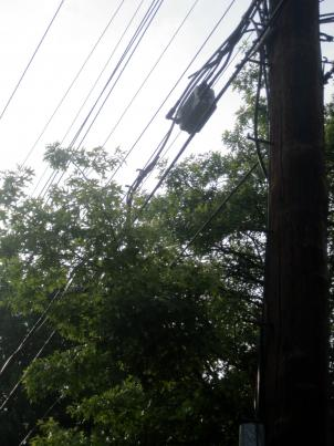Pepco is asking Montgomery County for more authority when it comes to trimming trees on private property.