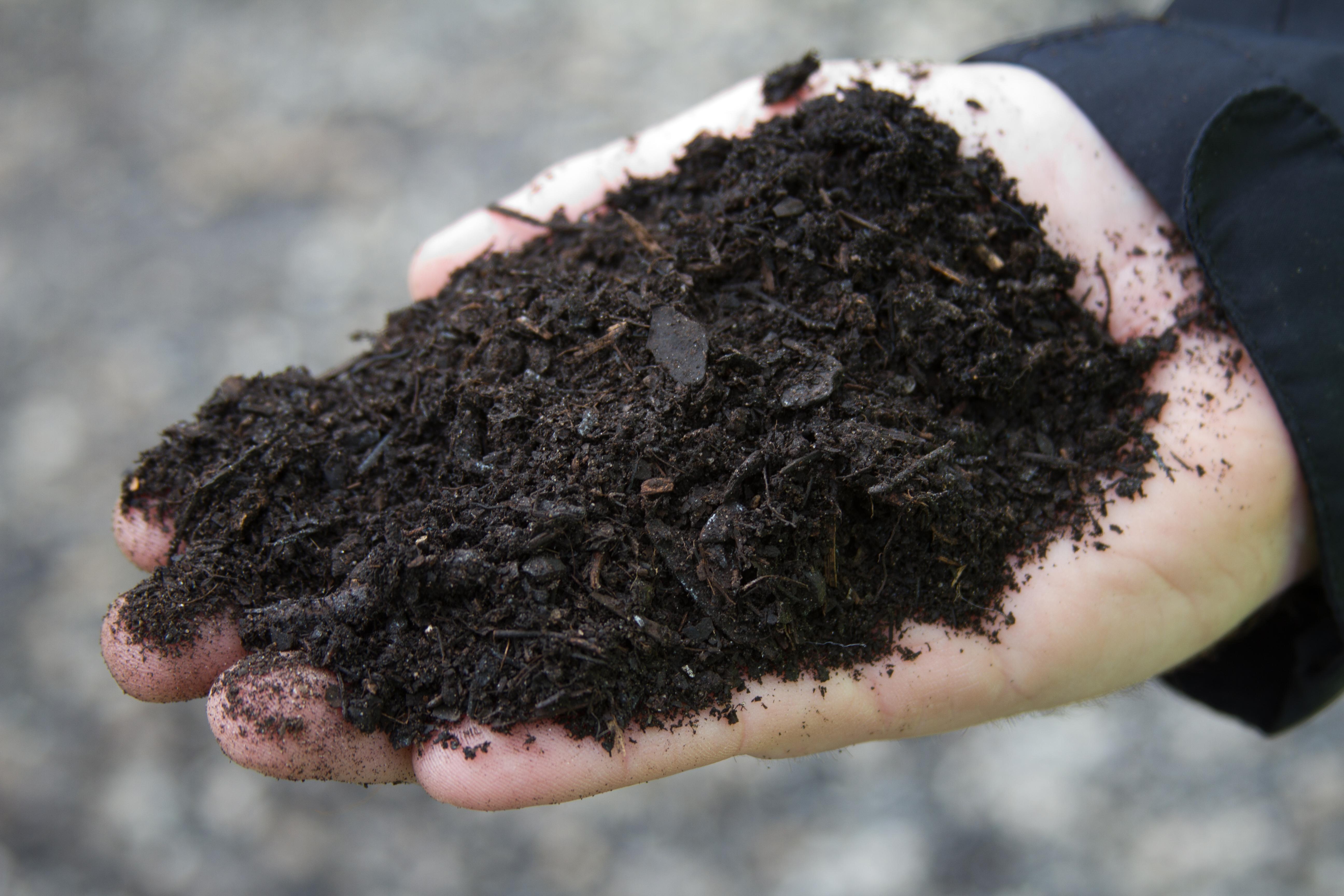finished compost prince sells it as leaf gro goldjacob fenston wamu