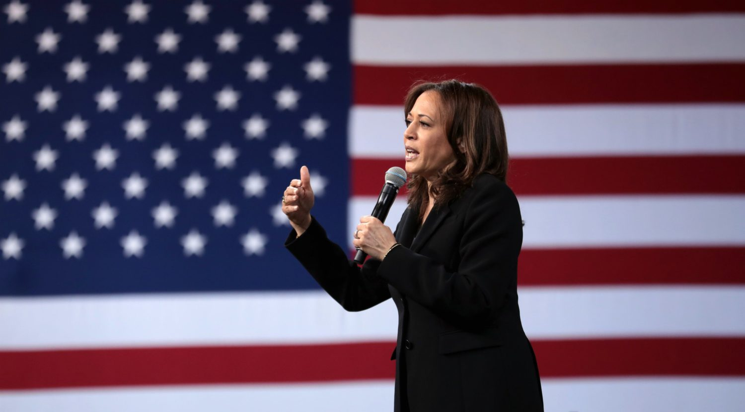 What Kind Of Gun Laws Will Joe Biden Kamala Harris 2020 Champion