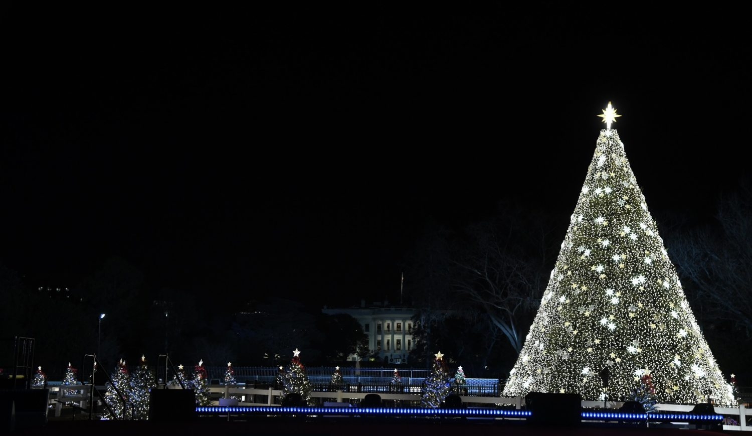 National Christmas Tree 2020 Journey To White House What To Know About ZooLights And The National Christmas Tree WAMU