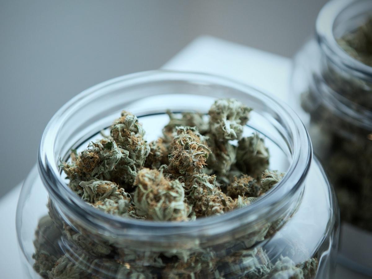 The War on Drugs: Legalizing Marijuana the Right Way