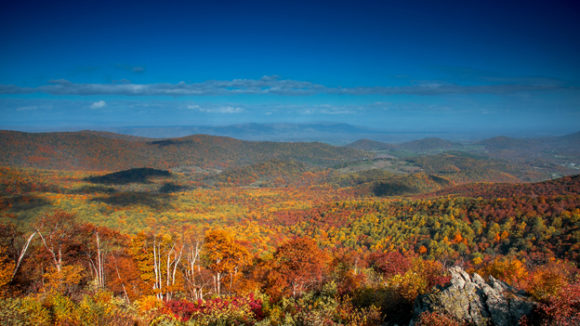 To See Fall Foliage In Its Colorful Glory In Virginia Maryland